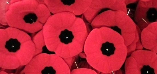 For Every Poppys Petal A Story Of Remembrance