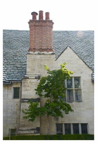 2013-10-30-graystone_mansion_chimney_huffpo.jpg
