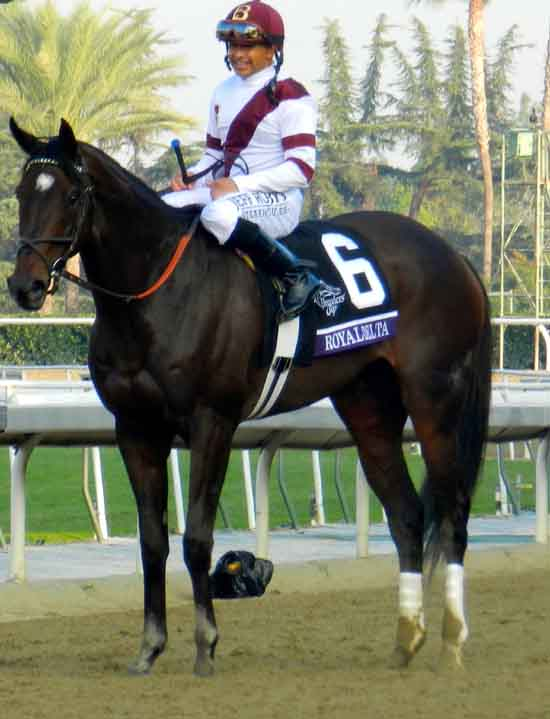 Mike Smith Ready For The Breeders Cup Huffpost