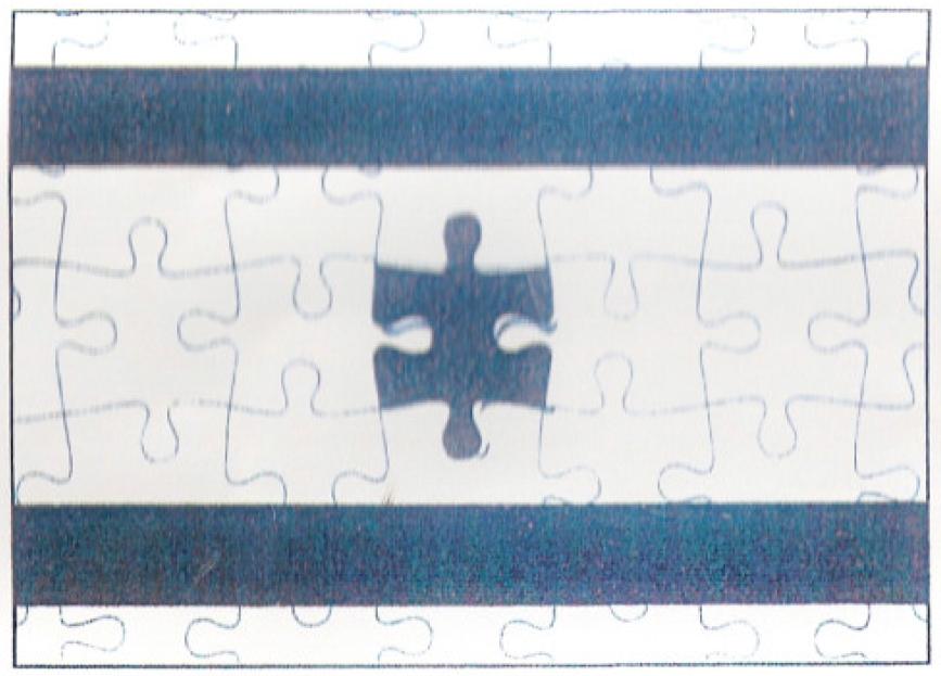 2013-11-04-israeliflagpuzle.jpg