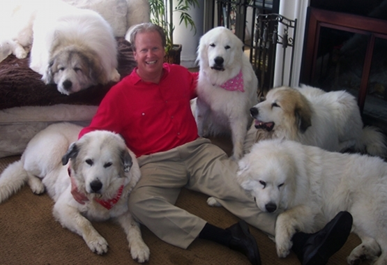 2013-11-05-steve_w_dogs.jpg
