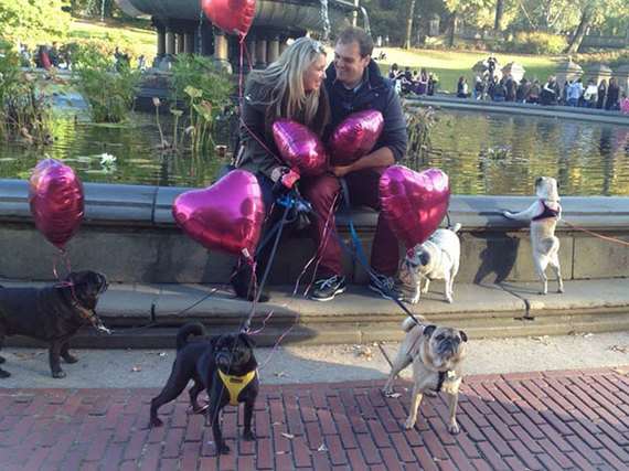 2013-11-06-pugproposal12_facebook.jpg
