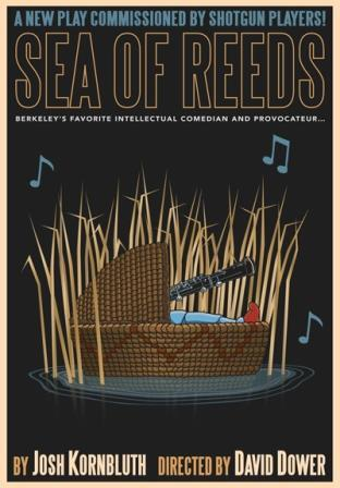 2013-11-06-seaofreeds_poster.jpg