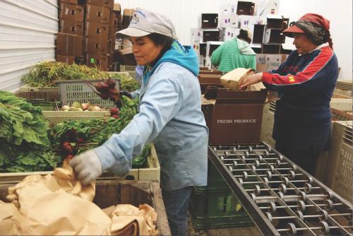 2013-11-07-Farmersmarket.jpg
