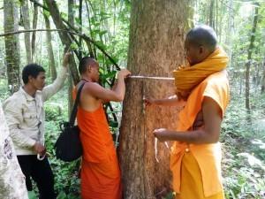 2013-11-08-Monks.jpg