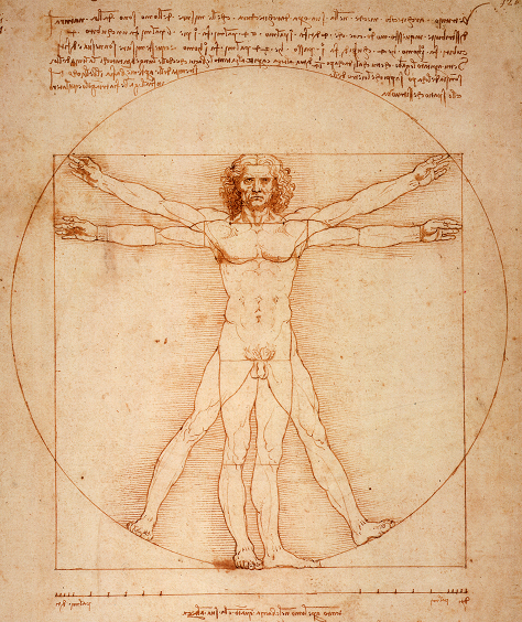 2013-11-08-Vitruvian_Man_by_Leonardo_Da_Vinci_small.png