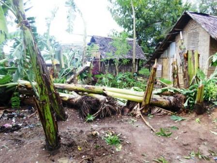 2013-11-09-Philippines3.jpg