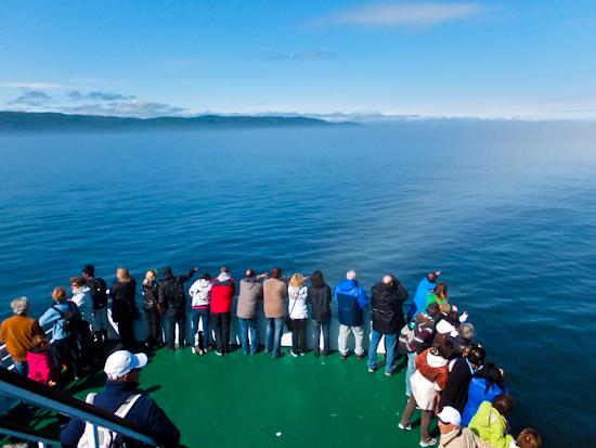 2013-11-10-WhaleWatching.jpg
