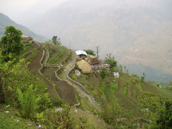 2013-11-13-Nepalifarm.jpg