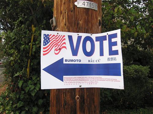 2013-11-13-Votephoto.jpg