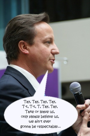 2013-11-14-davidcameron_caption.jpg