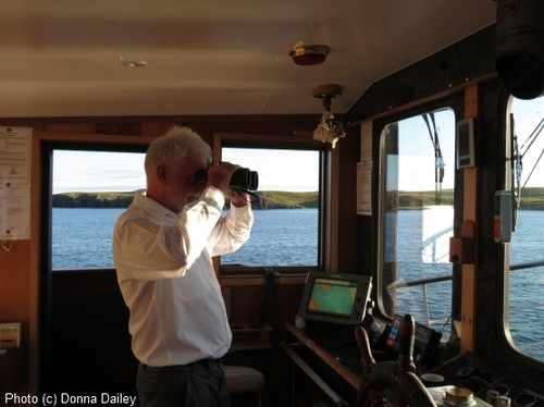 2013-11-16-Scotland_Wildlife_Cruise_Skipper_on_watch.jpg