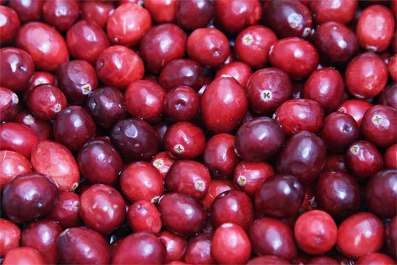 2013-11-20-IMG_9062Cranberries.jpg