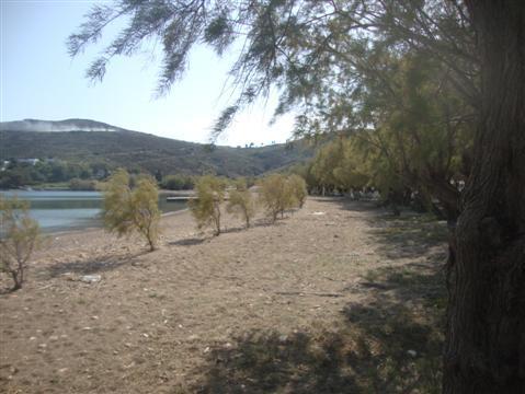 2013-11-24-Greece824Custom.JPG