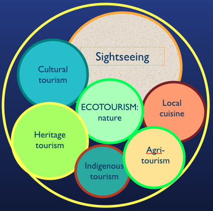 Ecotourism business plan examples