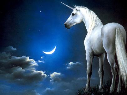 2013-11-25-unicorn.jpg