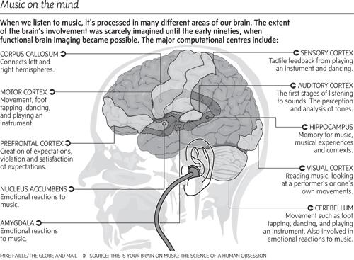 2013-11-27-brainandmusic.jpg
