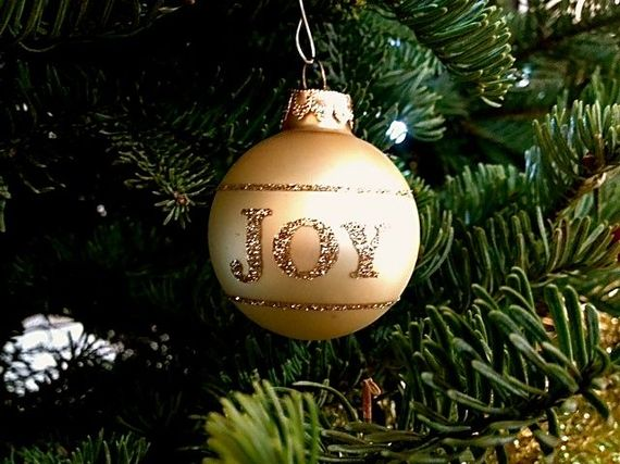 2013-12-03-Joy.jpg