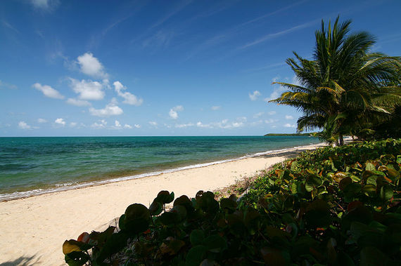 2013-12-04-800pxAlmond_Beach_Hopkins_Stann_Creek_Belize.jpeg