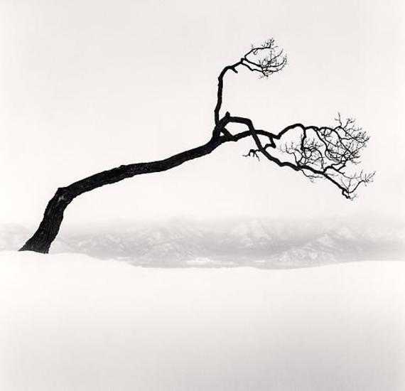 2013-12-04-Kussharo_Lake_Tree_Study_9_Kotan_Hokkaido_Japan__200901.jpg