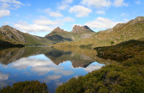 2013-12-05-Tasmanianature.jpg