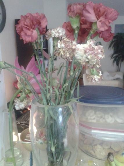 2013-12-13-flowers.jpg