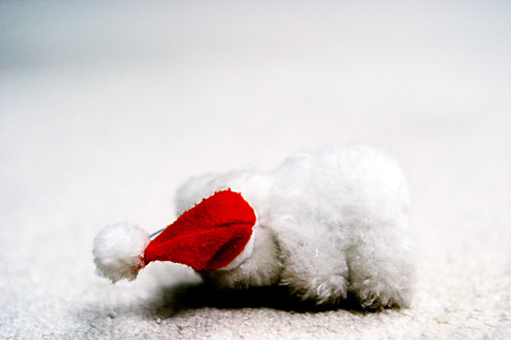 2013-12-13-teddybear2.jpg