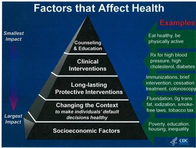 Environmental factors influencing public health and medicine: policy implications.