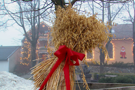 2013-12-17-christmaswheatwreath.jpg