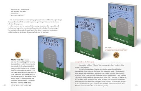 2013-12-18-35_ALifeInBooks_GoodPlotBooksSpreadRGB72dpi.jpeg