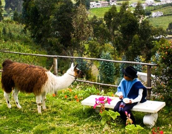 2013-12-24-OtavaloEcuadorsteenieharvey.jpg