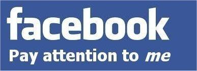 2014-01-02-FBPayAttentiontome.jpg
