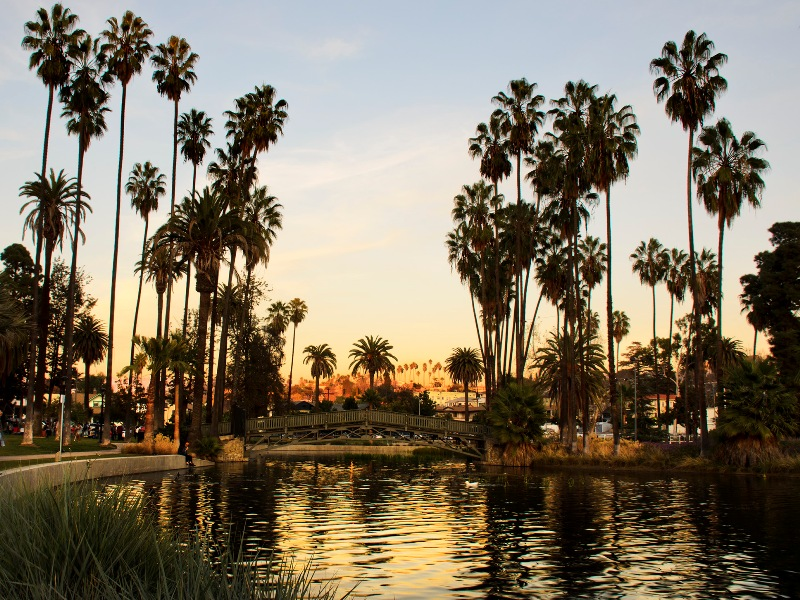 echo park in los angeles essay A photo essay of graffiti, murals and professional street art pieces as seen  the  awesome 'hood of echo park is home to a lot of street art, from.