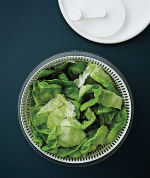 2014-01-03-saladspinner.jpg