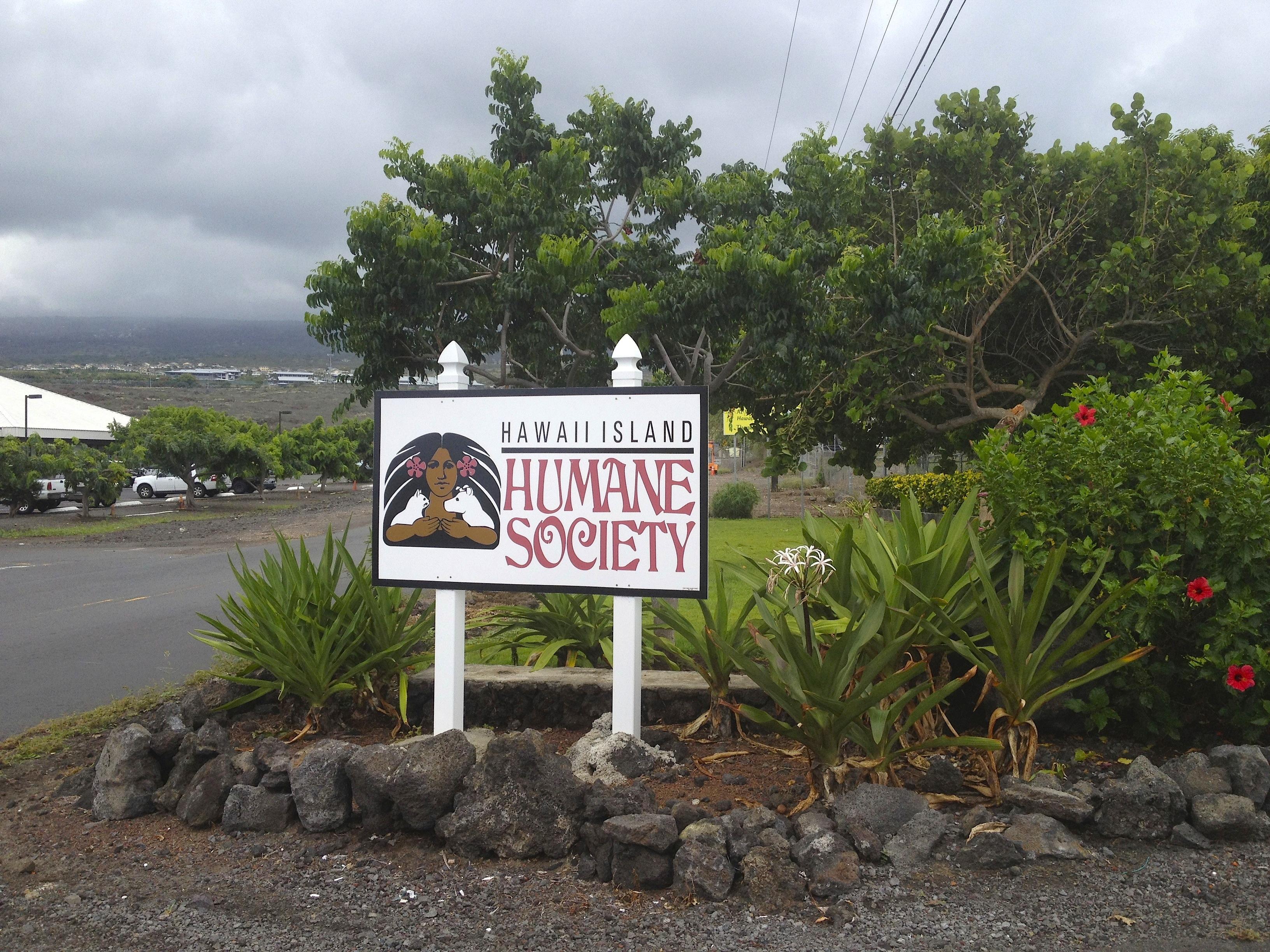 Animal Shelter Hawaii Big Island