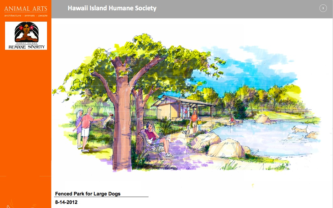 The Hawaii Island Humane Society's Big Leap Into the Future | Judy