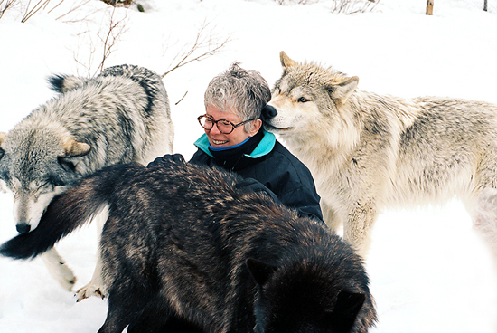2014-01-05-Sandy_sitting_with_Wolves.jpg