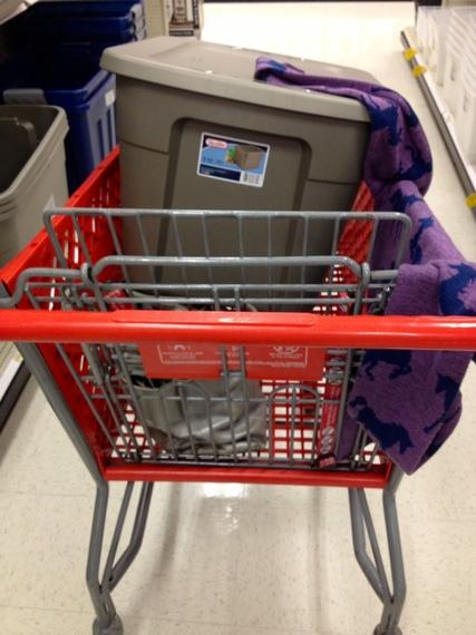 2014-01-06-TargetCart.JPG