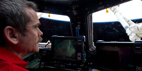 2014-01-06-anastronautsguidetolifeonearth.jpg