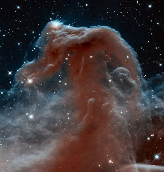 2014-01-07-horsehead.jpg