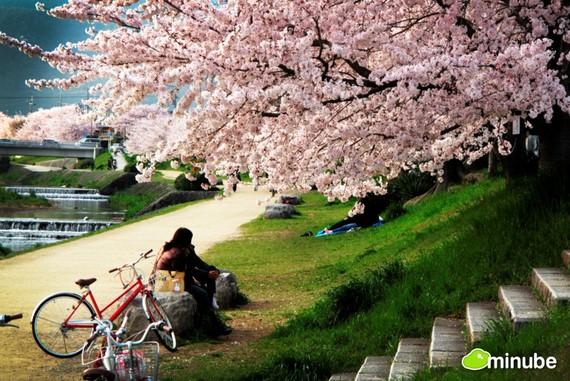 2014-01-08-KyotoAlbertVilaroRovira.jpg