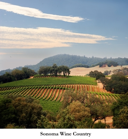 2014-01-08-Sonoma_wine_country.jpg