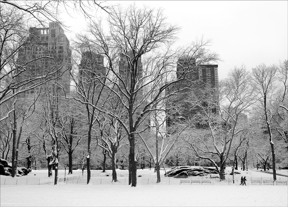 2014-01-09-Nickcentralpark_snowwinter.jpg