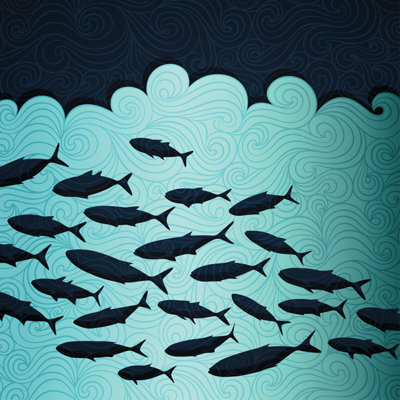 Climate change worsens mercury pollution huffpost for How does mercury get into fish