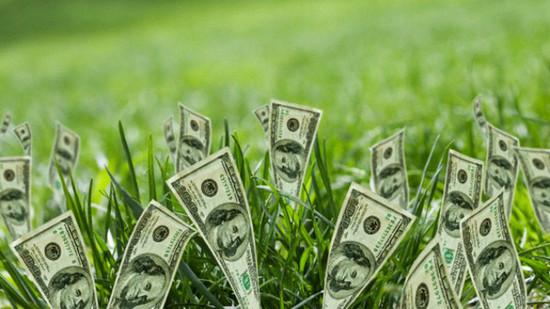 2014-01-12-la_green_economy_ci_salver___dalla_crisi__7633.jpg