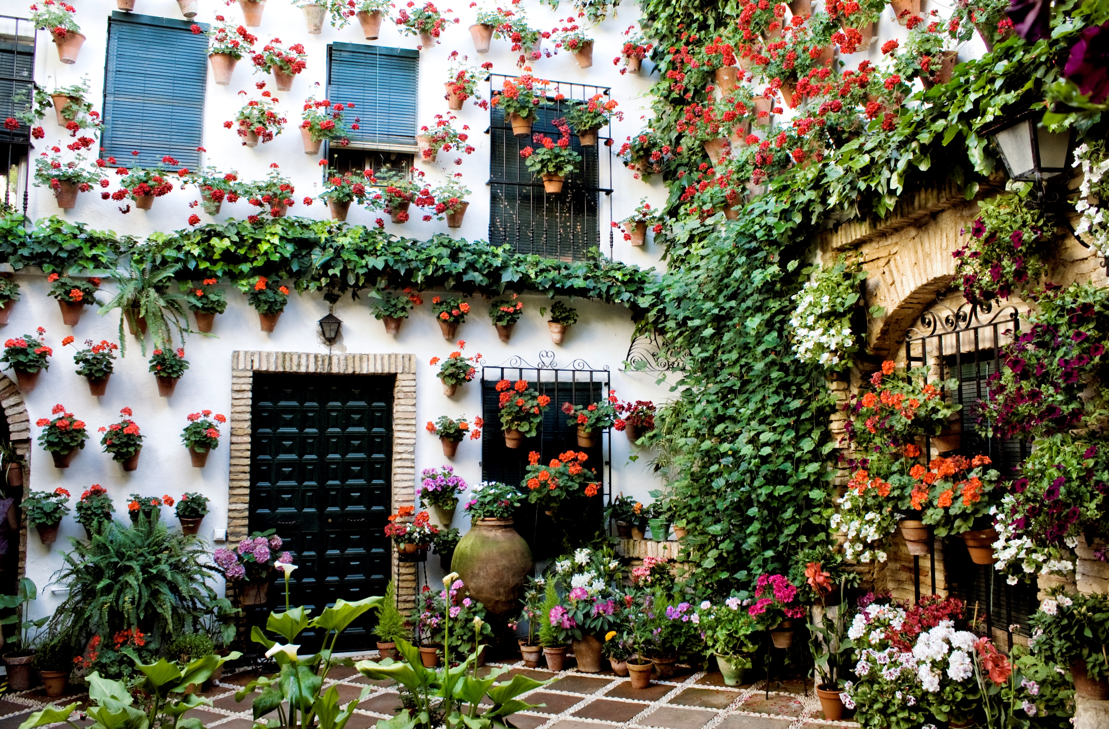 20 reasons to drop everything and go to spain huffpost - Plantas para patios ...