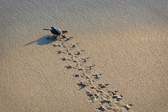 2014-01-17-sand.jpg