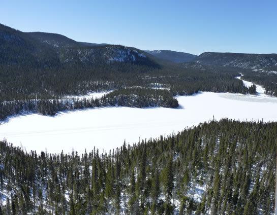 2014-01-20-Labradorbyjonfeldgajer.jpg