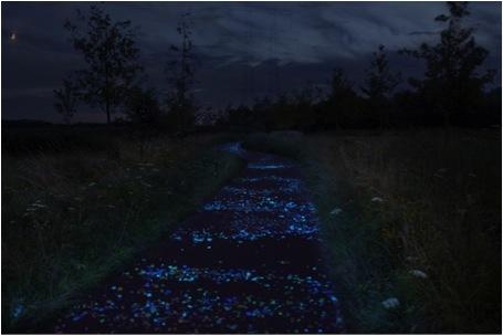2014-01-20-Path.jpg