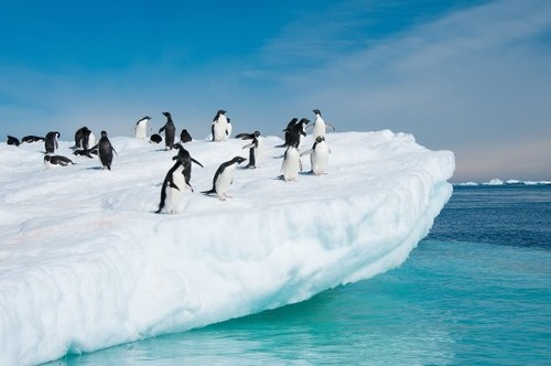 2014-01-23-Antarctica.jpg